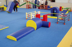 BABY-GYM-TOURS-1[1]